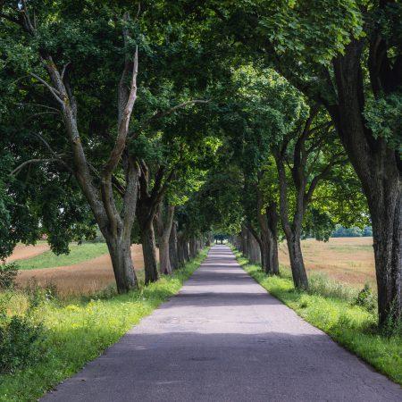 Warmińska Droga Krajobrazowa